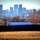 Denver Skyline by DevotedHeart