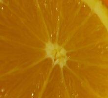 Open Orange Panel #1 of 3 (Please read description) by Stephen Thomas