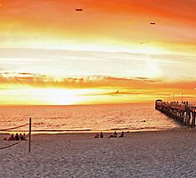 Henley beach Panorama by Bhavin Jadav