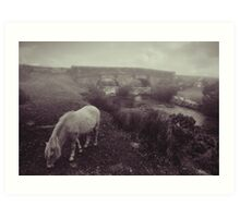 Foggy day in Dartmoor Art Print
