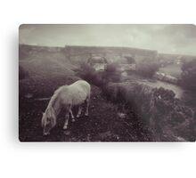 Foggy day in Dartmoor Metal Print