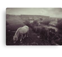 Foggy day in Dartmoor Canvas Print