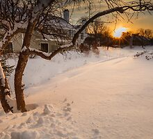 Blizzard setting by Owed To Nature