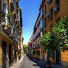 Old Quarter of Madrid by Tom Gomez