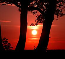 Red Sun by EthanMcFenton