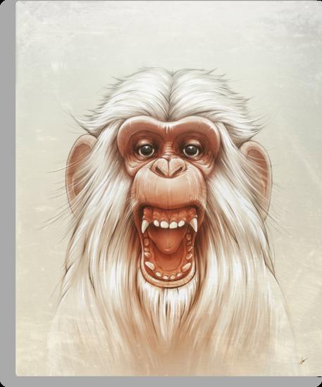 The White Angry Monkey by Lukas Brezak