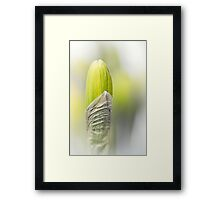 It isn't a mini-skirt... Framed Print