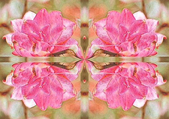 Rosy Reflection by aprilann