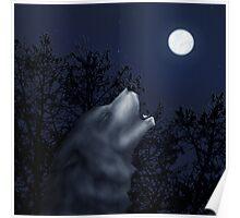 Moonlit Symphony Poster