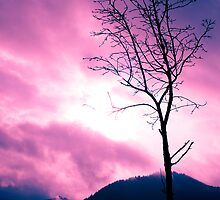 Into the Pink & Purple Sky - JUSTART © by JUSTART
