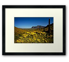 Spring View of the Superstition Mountains Framed Print