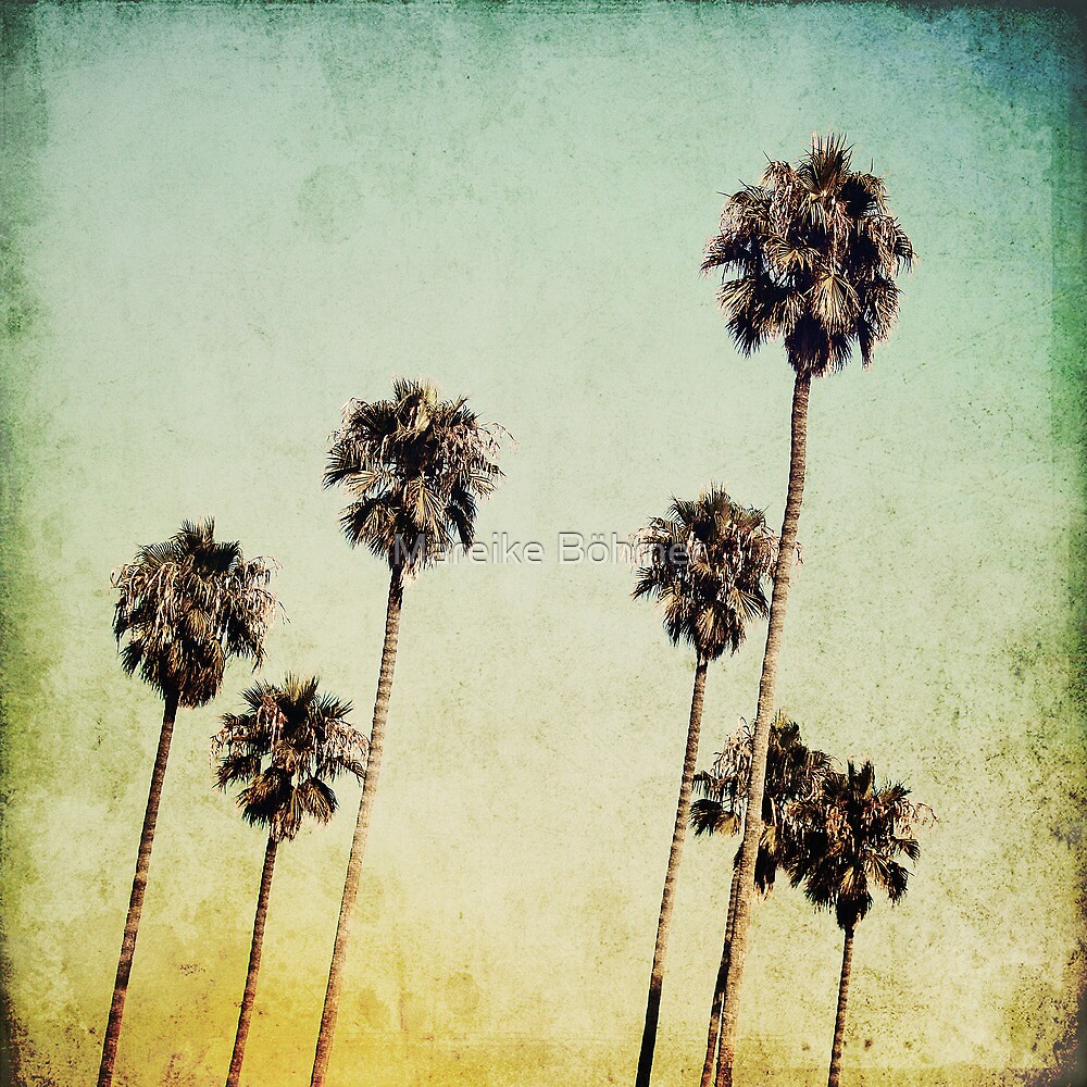 Palm Trees II by Mareike Böhmer
