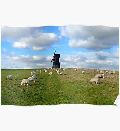 Rottingdean Windmill Poster