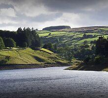 Lower Laithe Reservoir by Rachel Down