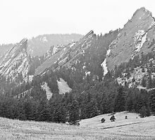 Three Giant Flatirons View Boulder Colorado BW by Bo Insogna