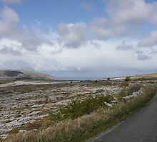 Stark Beauty: The Burren in County Clare, Ireland by Erin K Casey