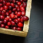 Cranberries by Edward Fielding