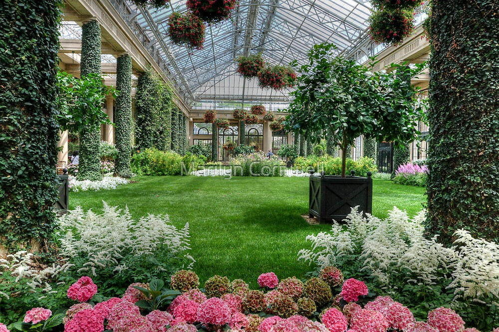 Longwood Conservatory Spring by Marilyn Cornwell