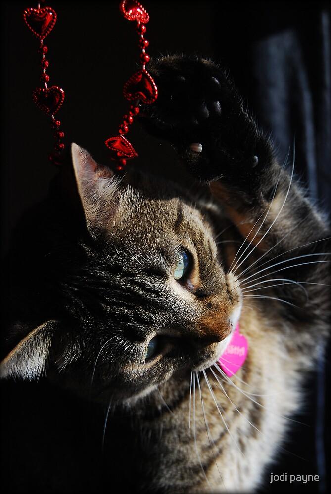 Happy Valentines Day!! by jodi payne