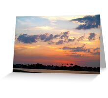 Panoply of colors Greeting Card