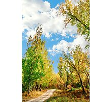 Rest beside the path Photographic Print