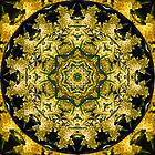 Golden Wattle Mandala by haymelter