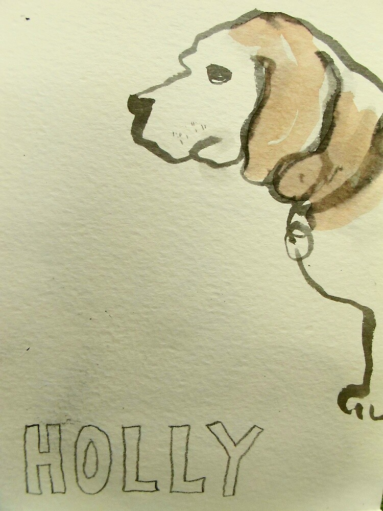holly is 9 years old not 7 by donna malone
