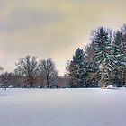 Winter Vista by njordphoto