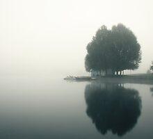 Fog on the lake by Vladimir Fomin
