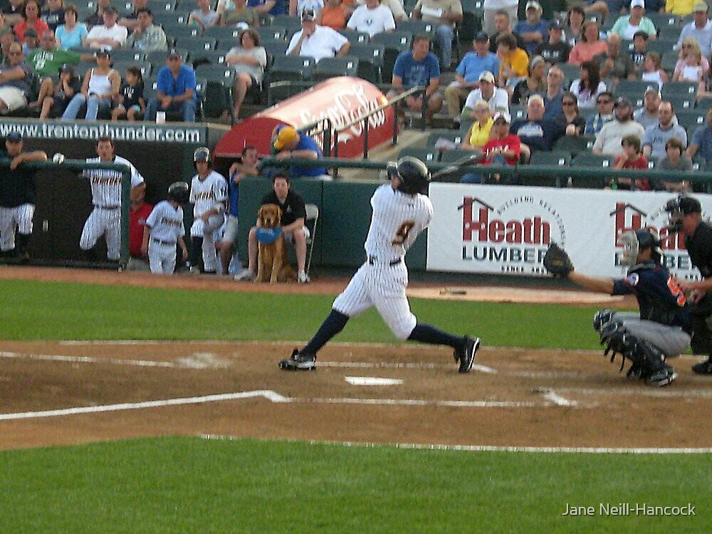 And He Swings! by Jane Neill-Hancock