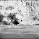 Lake Michigan © by Dawn M. Becker