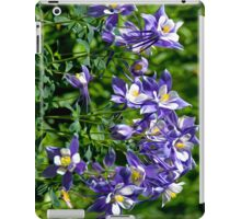 Colorado Mountain Columbine for iPad iPad Case/Skin
