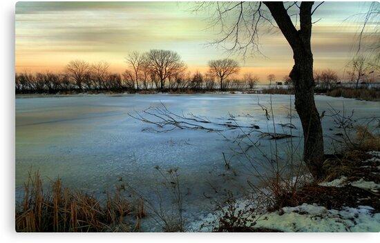Winter's Eve © by Dawn M. Becker