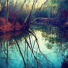 The Darkened Stream by Scott Mitchell