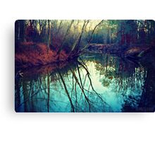 The Darkened Stream Canvas Print