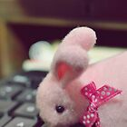 Bunny Collection #5 - a bunny on a keyboard by Cyndy Ejanda