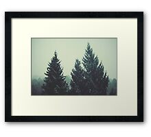 Canadian Framed Print