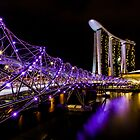 Helix Bridge by Trevor Middleton