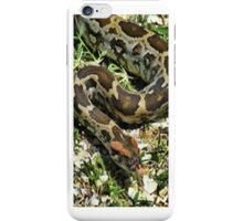☝ ☞ SNAKE IPHONE CASE☝ ☞ iPhone Case/Skin