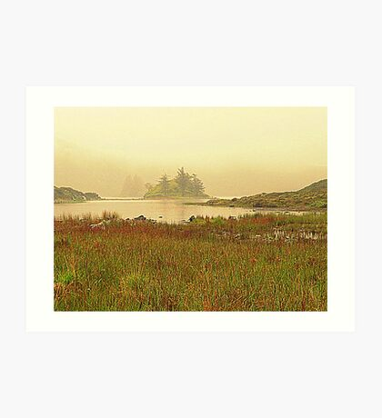 Irish Mist Art Print