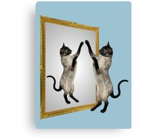Cute Siamese Cat In Mirror Canvas Print