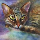 Vibrant Watercolor Bengal cat painting by Svetlana Novikova by Svetlana  Novikova
