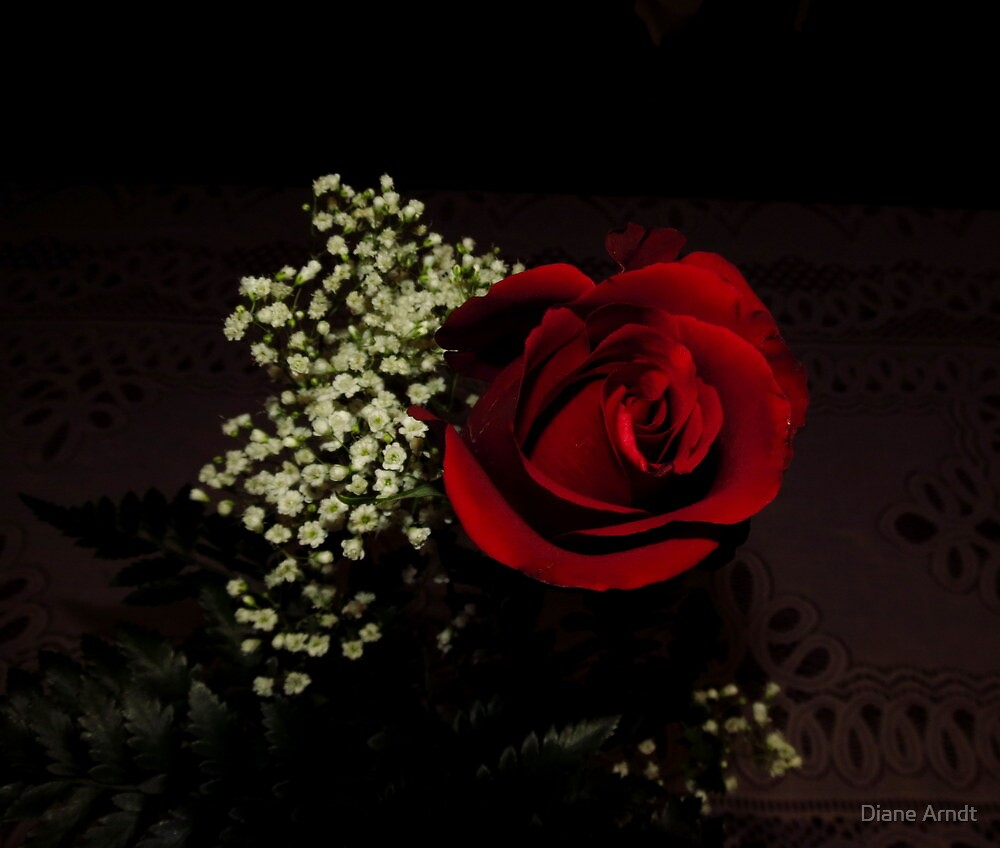 George Got The Red Rose This Year...From Me '~} by Diane Arndt
