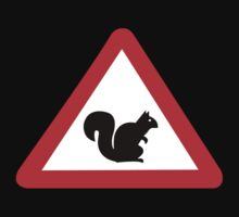 Squirrels Crossing, Traffic Sign, Spain by worldofsigns
