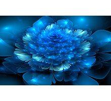 Blue Petals Photographic Print