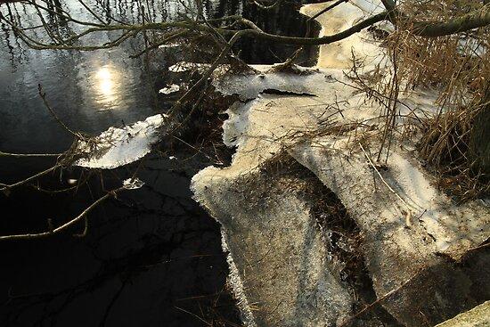 Ice and water, a last wintershot? by Birgit Van den Broeck