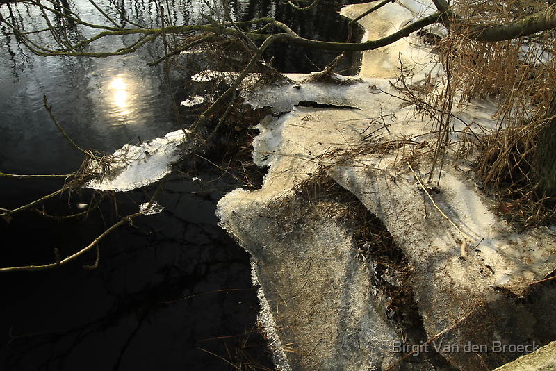 Ice and water, a last wintershot? by Birgit Van den Broeck
