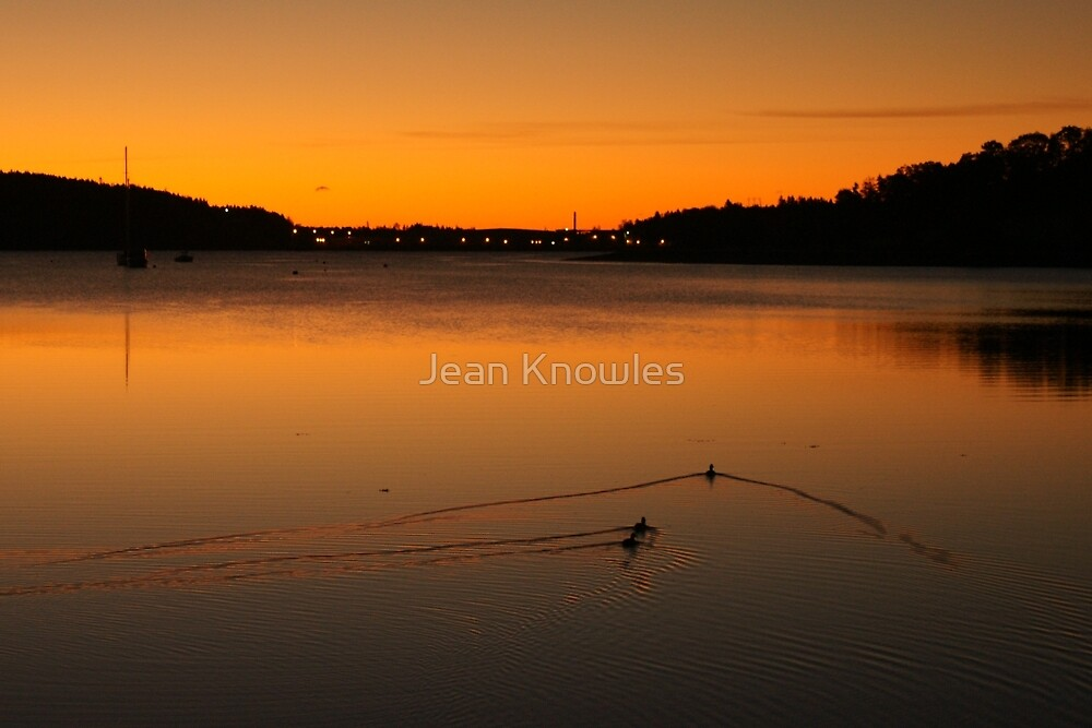 Lunenburg sunrise with ducks by Jean Knowles