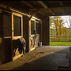 Horse Barn Sunset by Edward Fielding