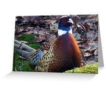 Where is my dinner? You are late! Greeting Card